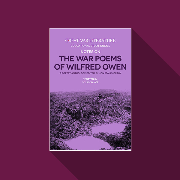 essay on wilfred owen war poems