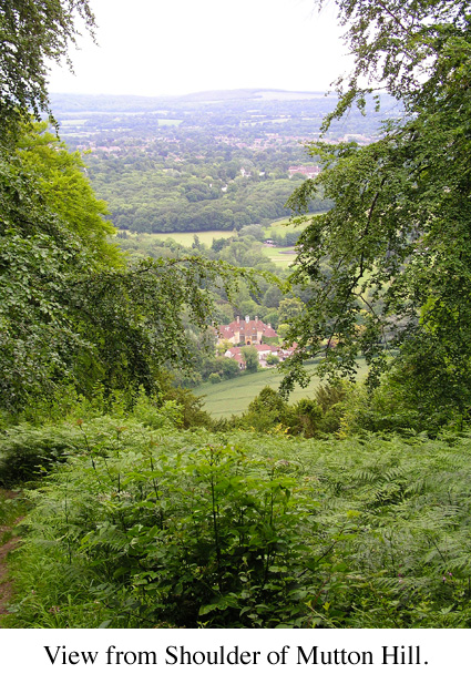 View from Shoulder of Mutton Hill, Steep