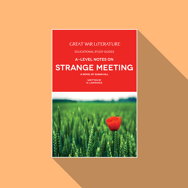 Strange meeting - coursework